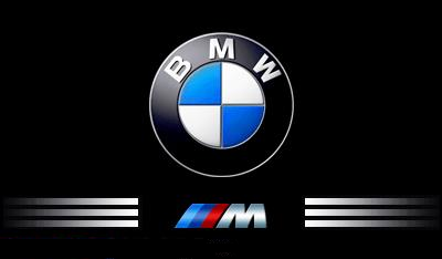 bmw m logo fielies ri tte de kock. Black Bedroom Furniture Sets. Home Design Ideas